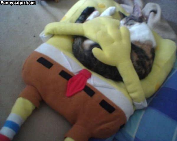 Spongebob Cat Bed