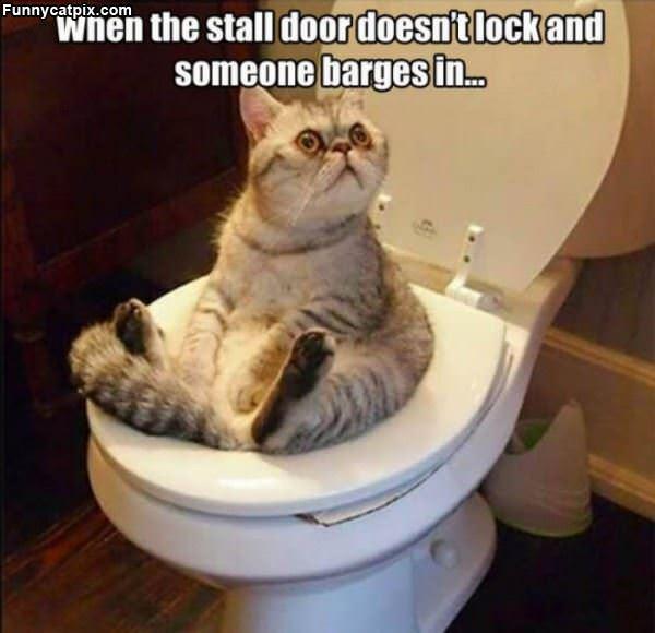 Stall Door Has No Lock
