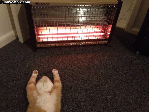 Staying Very Warm