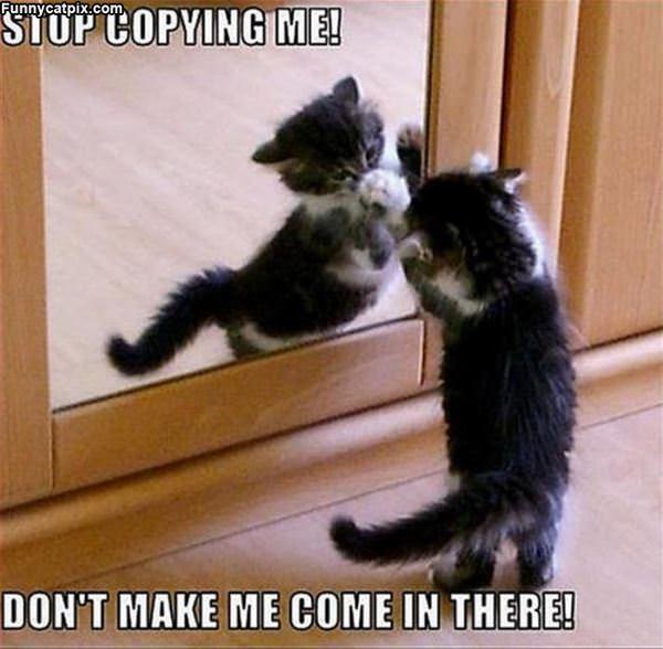 Stop Copying Me
