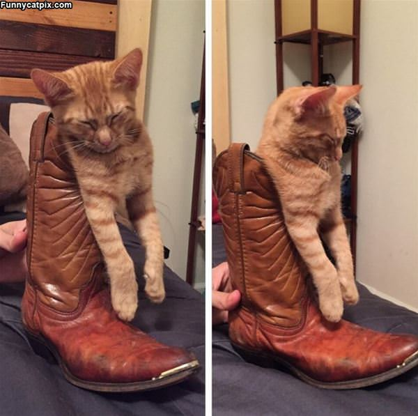 Stuck In My Boot