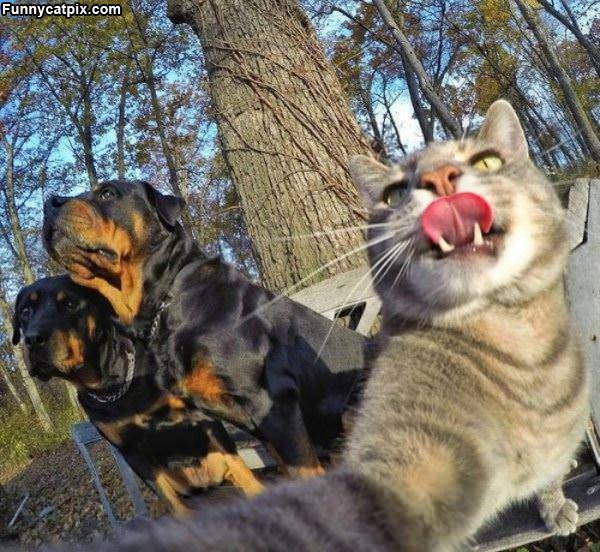 Taking Me A Selfie