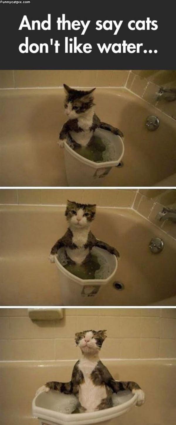 爱洗澡 - 雪山 - .