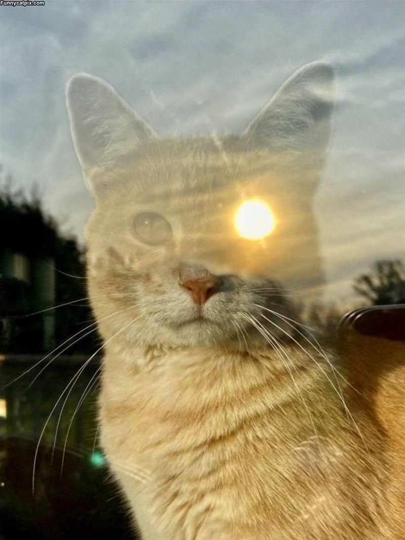The Sun Eye