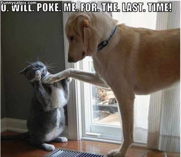 U Will Poke Me