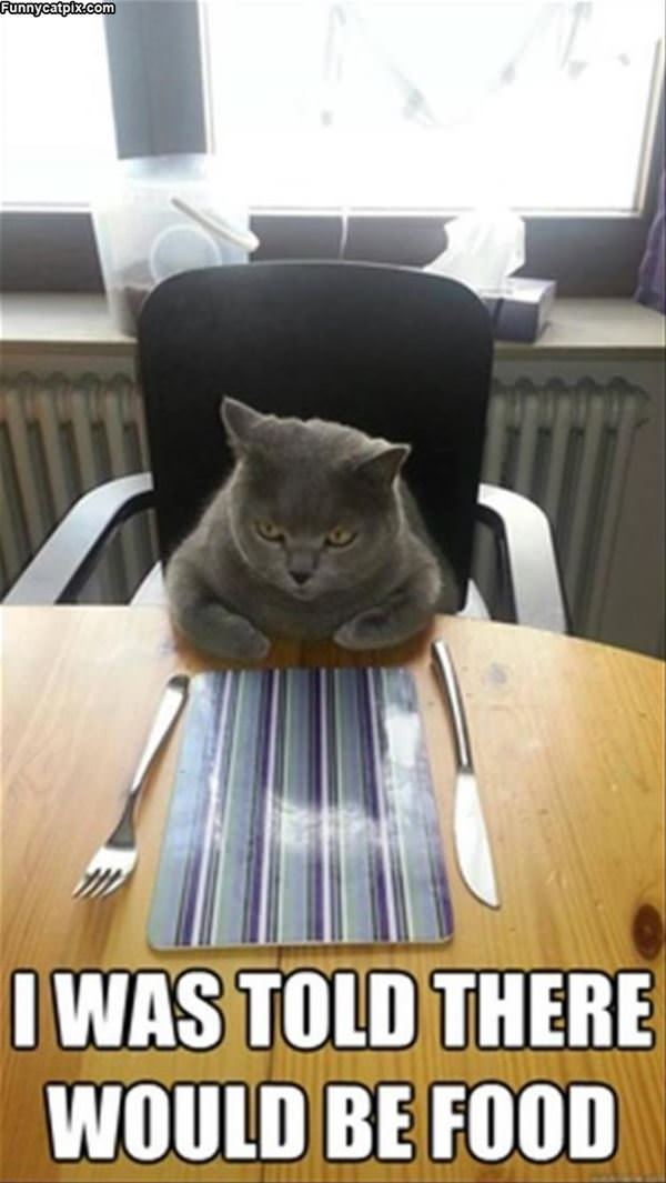 Where Is The Food