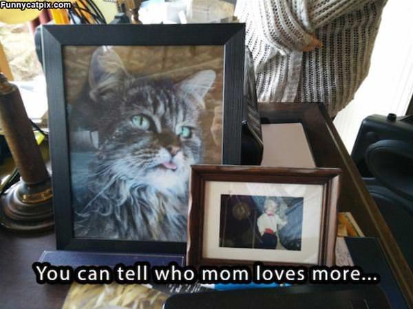Who Mom Loves More