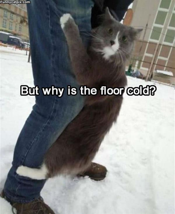 Why Is The Floor Cold
