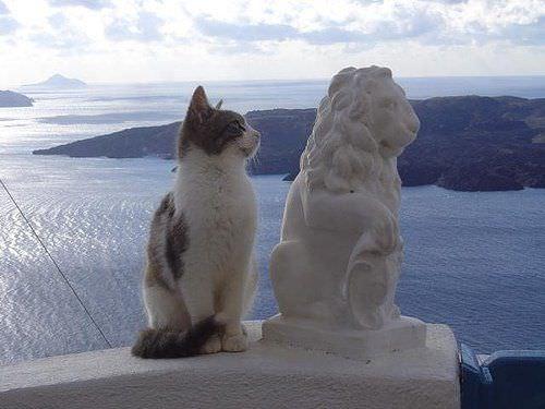 看看我的纪念碑 - 雪山 - .