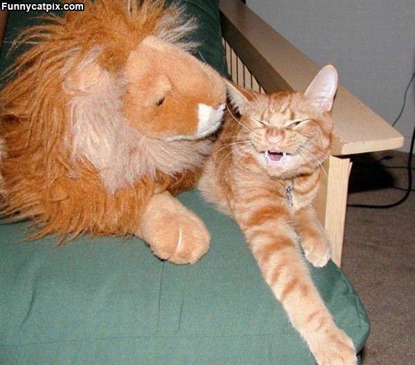 喂!我不是母狮 - 雪山 - .