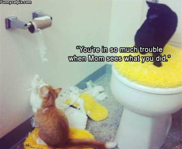 You Are In Trouble Now