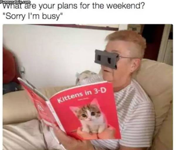 Your Plans For The Weekend